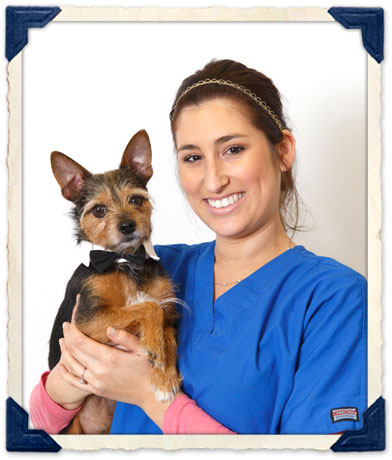 Burlingame, CA Veterinary Staff